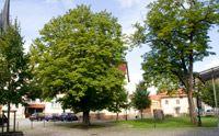 Schwallunger Dorfplatz